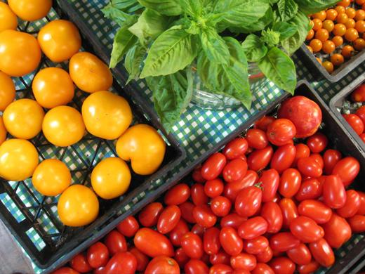 Fruit & Vegetable Distributor